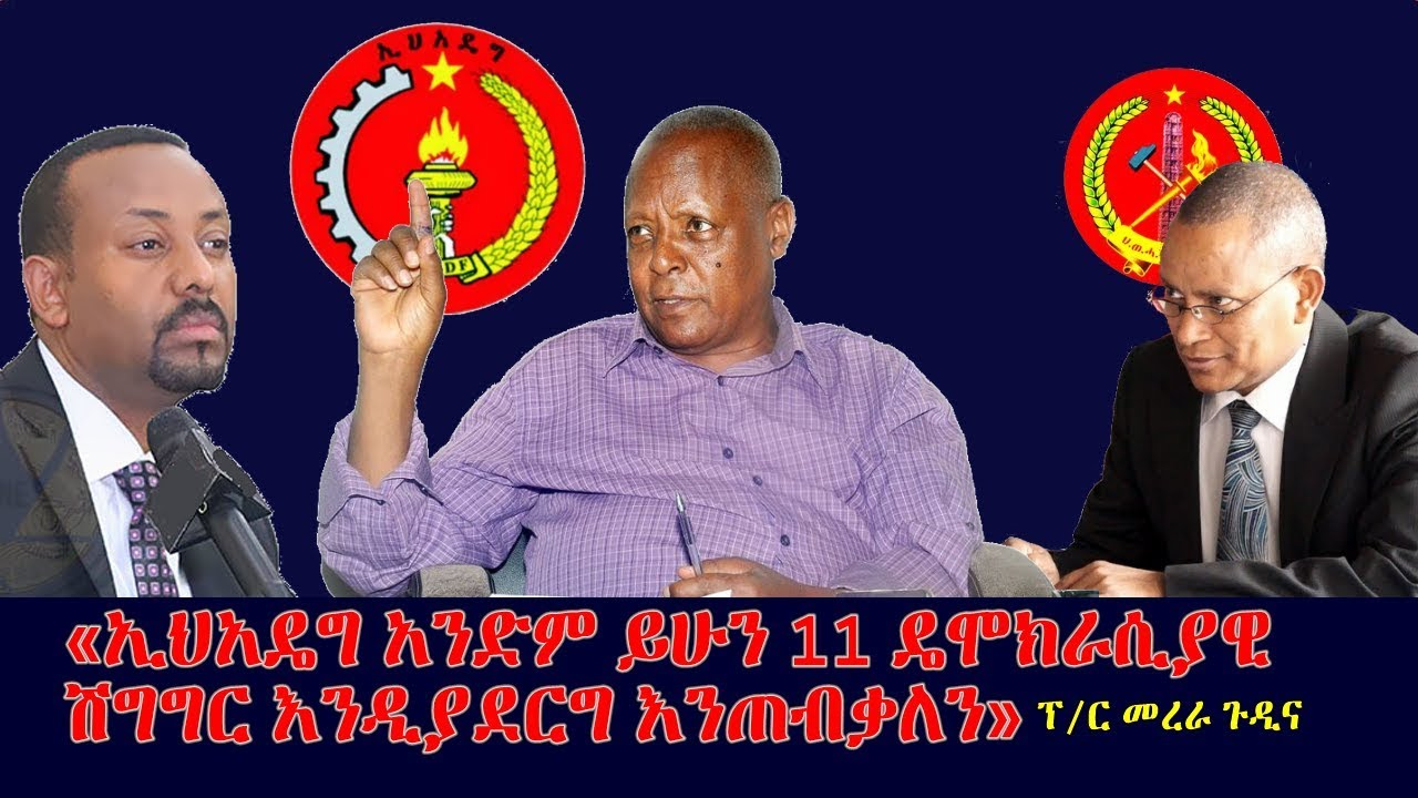Prof. Merera Gudina about the controversy of EPRDF merger