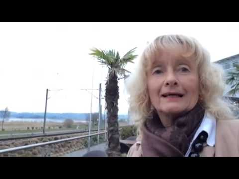 English, Video and Tipp from Seedamm Plaza, Lake of zurich