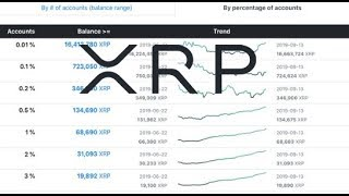 XRP Rich List Stats Changing, Bakkt , Binance US , Ripple And Other Use Cases