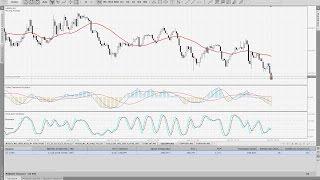 Безрисковая Торговля На Forex! UBK Markets - Технология IPAMM