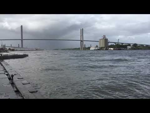 Hurricane Irma Aftermath: Savannah, Georgia