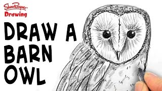 How to draw a Barn Owl - Spoken Tutorial