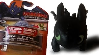 How To Train Your Dragon - Toothless Egg is Born!