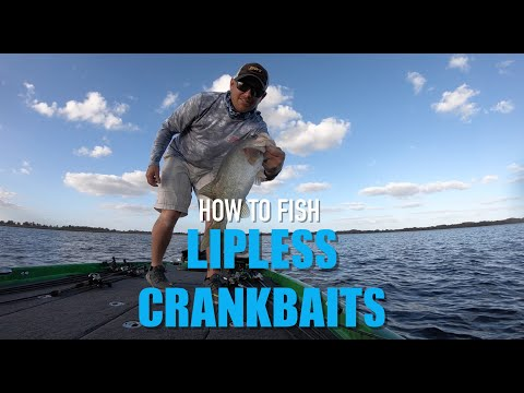How To Fish A Lipless Crankbait!