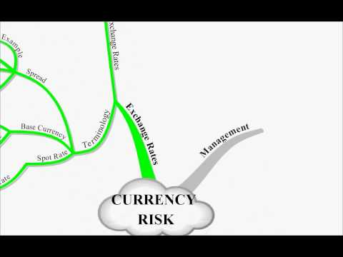 CIMA P3 Lecture 17 Currency Risk