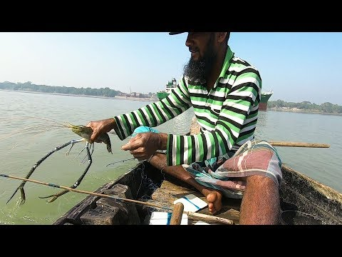 Wow!!! Awesome Shrimp Fish Hunting | From The River By Hook Over 30 Years! Real Fish Hunting |