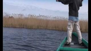 Щука в дельте Волги(Азартная рыбалка на щуку в дельте Волги. Веселое видео про рыбалку и отдых на природе. Анатолий Полотно..., 2010-05-15T14:47:58.000Z)