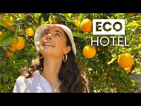 The Most Eco-friendly Hotel in Mallorca