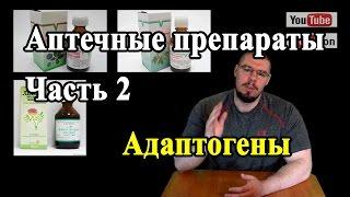 видео Адаптогены: что это?