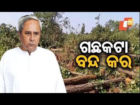 CM Naveen Patnaik orders immediate stoppage of tree cutting for beer factory in Balarampur