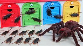 巨大なクモがタヨバスのガレージにやってきた! おもちゃ 怪獣 昆虫の話 トーマスとチャギントン
