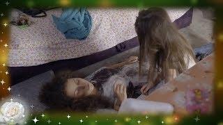 La Rosa de Guadalupe: Dulce es testigo de las adicciones de su mamá   Cuando me peinas...
