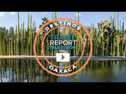 ¿Qué hacer en Oaxaca de Juárez? Enamórate de la ciudad
