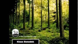 Klaus Benedek - Screaming Woods / hangerCliff EP