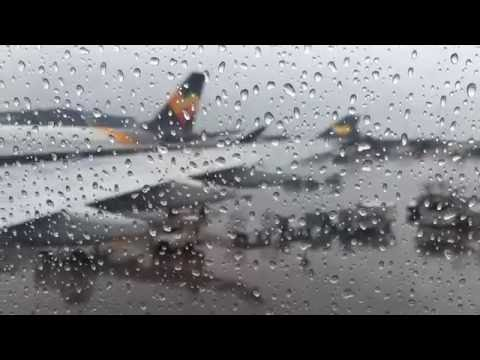 Thomas Cook A330 Economy Class Manchester to Orlando (Full Flight