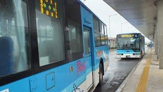 【日本路線バスの旅】沖縄県八重山・石垣島 東運輸空港線 石垣バスターミナル-~八重山支庁