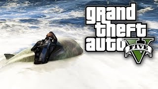 GTA 5 - 1v1 AGAINST A SHARK! (GTA V)