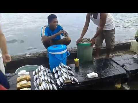 Pasar Ikan Segar Di  Hamadi Jayapura
