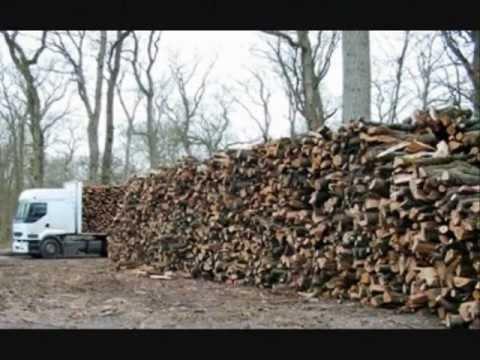 vendita legna da ardere pellet tronchetti pressati carbone