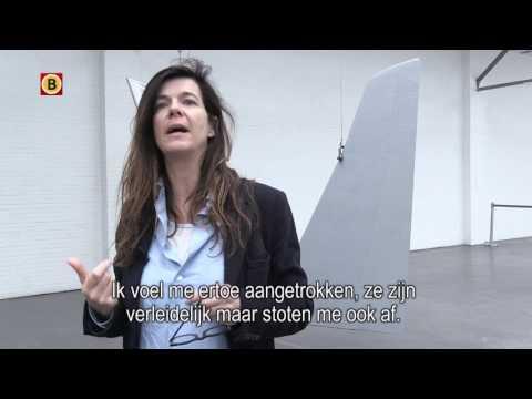 Fiona Banner gebruikt vliegtuigonderdelen voor haar kunstwerken in museum De Pont
