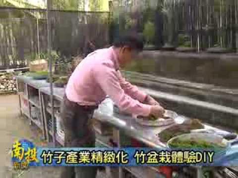 南投新聞-竹山竹盆栽DIY