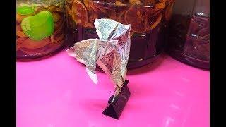 Cách gấp con cá heo bằng tiền giấy I Origami money dolphin