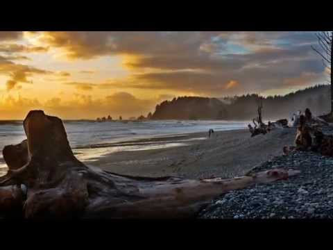 How To Photograph Olympic National Park (Photos)
