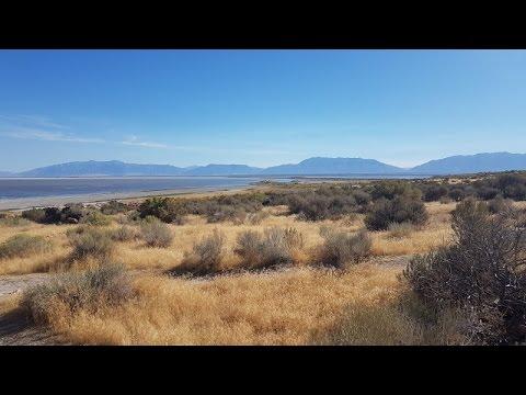 Antelope Island State Park - Great Salt Lake, Utah (4 K/UHD)