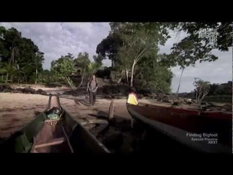 Anjumara - Suriname