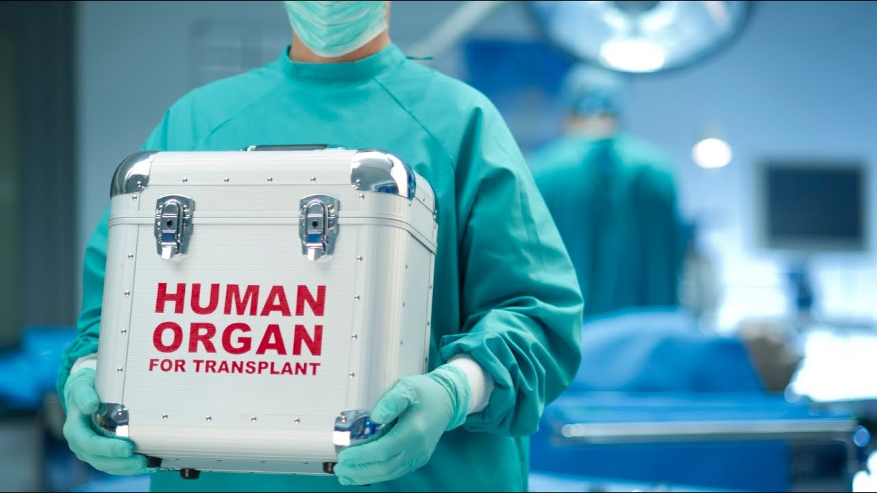 the legalization of organ sales