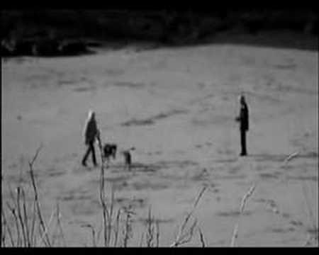 Climate Chaos film I made