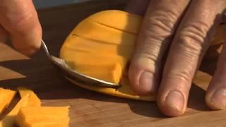 Grilled Lemon Basil Chicken With Cilantro Mango Salsa