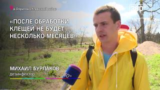 видео Обработка участков от клещей в Москве и Московской области