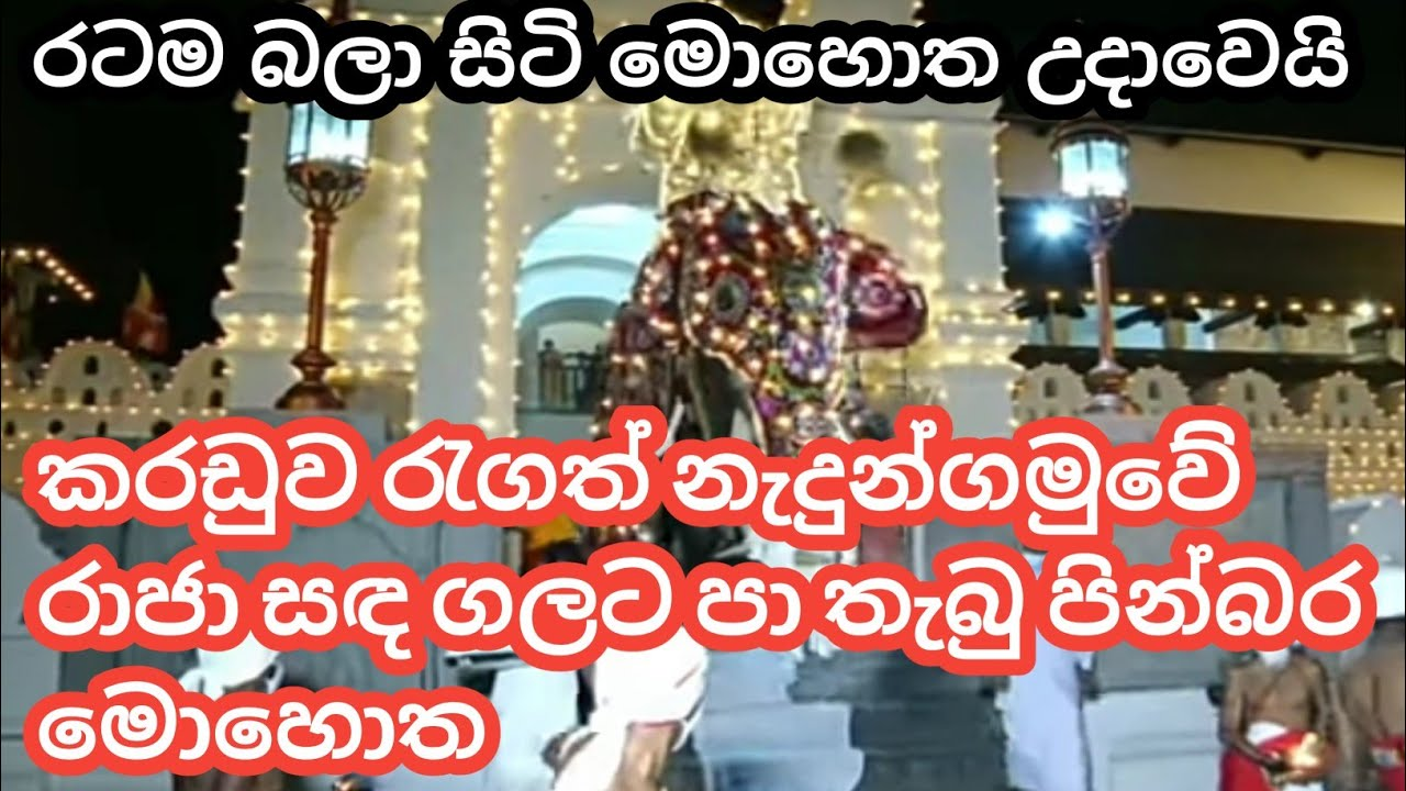 Download Nadungamuwe Raja At Final Randoli Perahera 2021