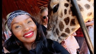 THINGS TO DO IN NAIROBI |DO WHAT YOU CAN'T|