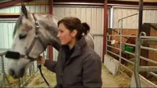 Sonia réalise son rêve, avoir son propre cheval