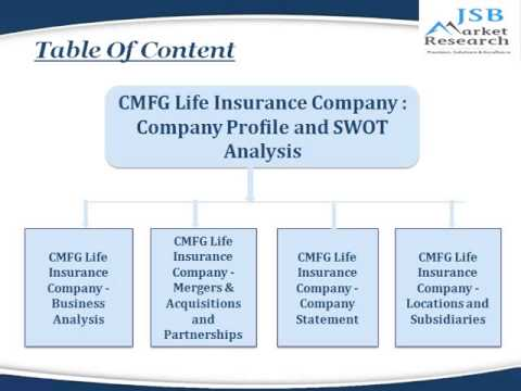 Cmfg Life Insurance Company  Company Profile And Swot Analysis