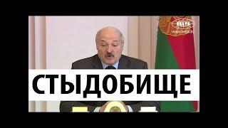 Лукашенко в ШОКЕ!!! какую ЗАРПЛАТУ себе начисляют местные БАНКИРЫ!!! СМОТРИМ!