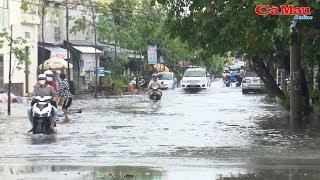 Cà Mau: ngập trong biển nước