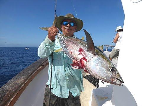 Mirage Sportfishing - Oct 12-13 2015 - Osborne Bank - SBI - El Nino Yellowfin Tuna