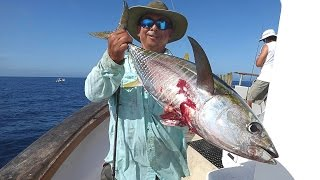 Mirage Sportfishing - Oct 12-13 2015 - Osborne Bank - SBI - El Nino Yellowfin Tuna