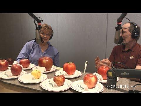 Searching for the Next Honeycrisp: An Apple Taste Test