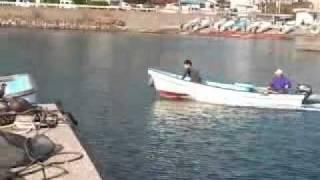 山茂丸 岩崎さん2011シラス水揚げ.mp4