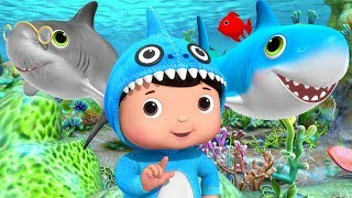 Baby Shark Dance | +More Nursery Rhymes & Kids Songs | Learn with Little Baby Bum