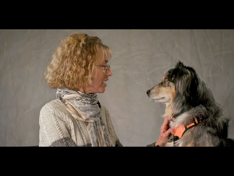 Hospice and Palliative Pet Therapy Volunteers at The ...