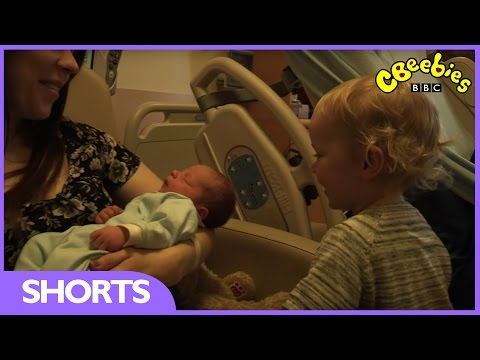 CBeebies: My First - Baby Brother