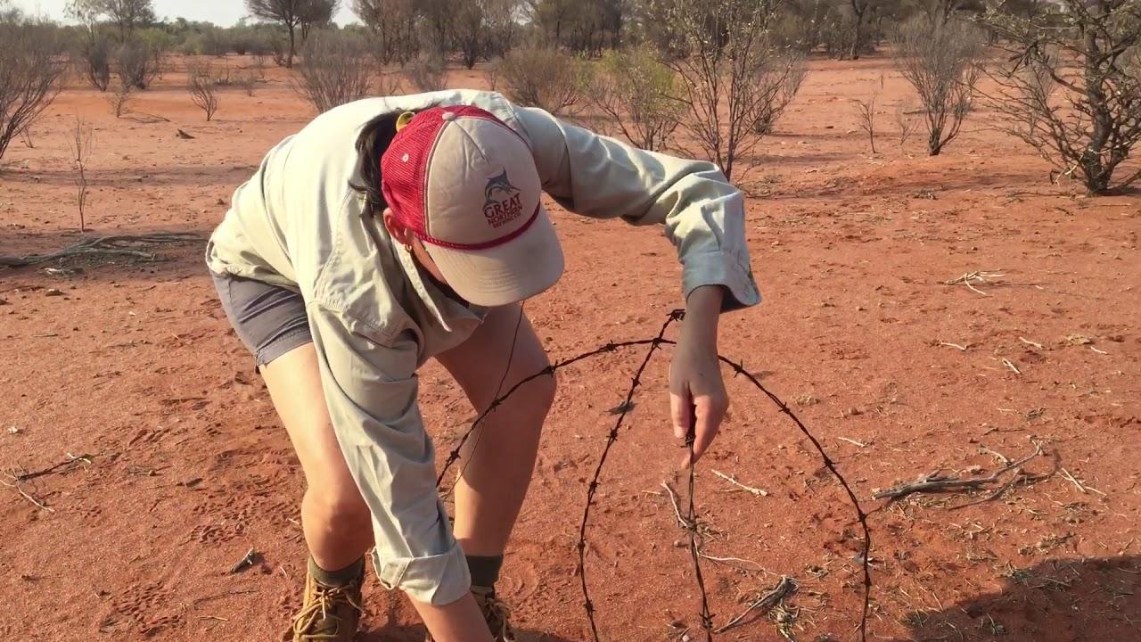How To Make A N Ornamental Barb Wire