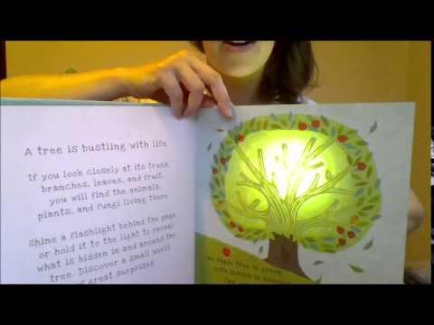 Usborne Shine A Light Books Classy Usborne's Shine A Light Book Apple Tree YouTube