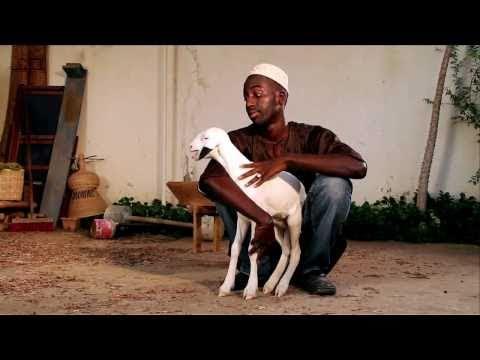 Spot TV Jarga - Grands Moulins de Dakar