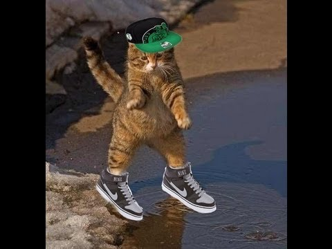 видео: Стрим Ильи Мэддисона по metro: last light + котики и dota 2